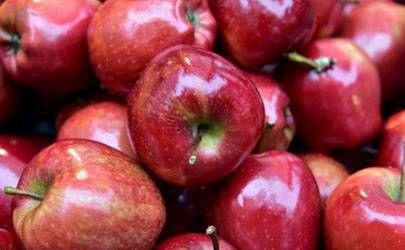 平安夜为什么送苹果?平安夜为什么要吃苹果